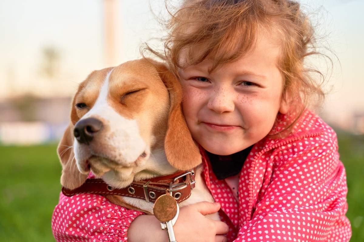 girl hugs beagle pets