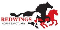 redwings horse sanctuary equine rescues