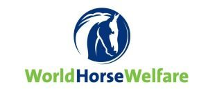 world horse welfare logo equine rescues