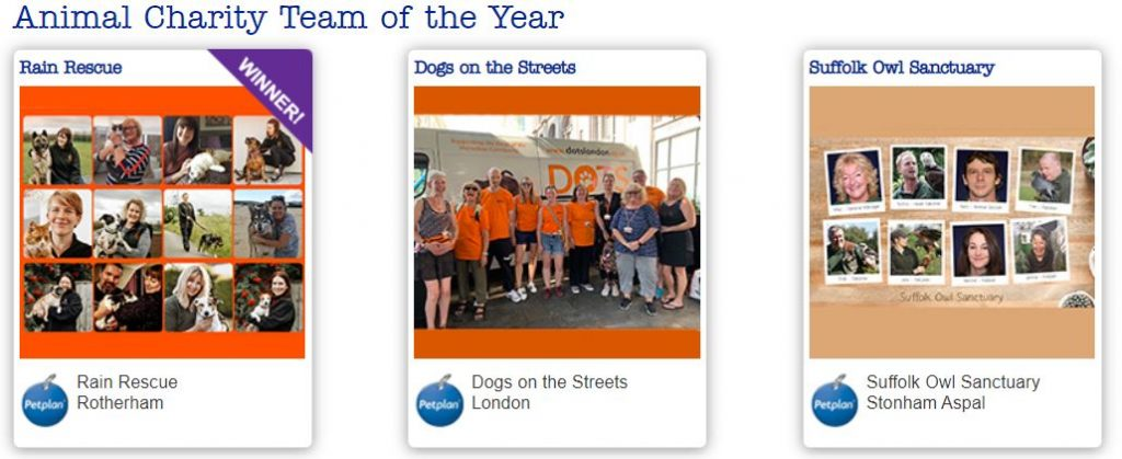 petplan animal charity awards team finalists