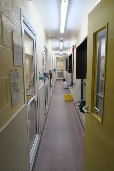 Isolation Unit Stokenchurch Dog Rescue funded by petplan charitable trust