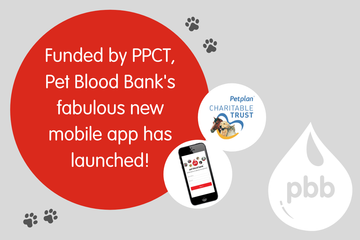 pet blood bank new app announcement